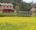 Rondreis Nepal Annapurna Basecamp