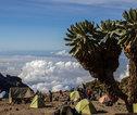 Rondreis Tanzania - Kilimanjaro