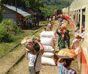 Rondreis Birma / Myanmar