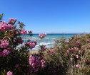 Fietsvakantie Griekenland Cycladen Natuur & zee