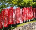 05 Kyoto - Nara