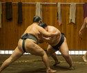 09 Sumo worstelaars
