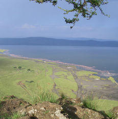 Gamedrive Lake Nakuru
