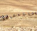 Negev woestijn