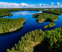 Finland bos