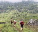 Rondreis Kalimantan, Sulawesi & Molukken