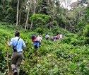 Uganda Nature Plus