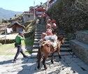 Rondreis Nepa onderweg naar Bamboo