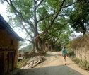 Rondreis Nepal Bandipur landschap