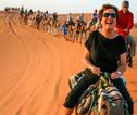 kameel Marokko rondreis