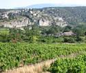 Fietsvakantie Provence 2